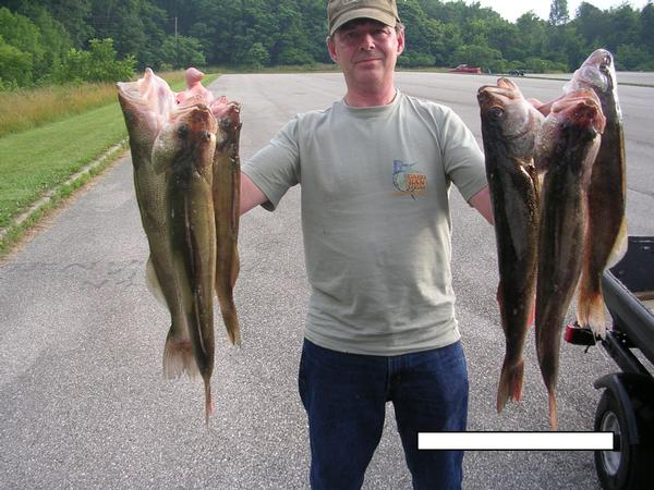 Monroe lake photos monroe county indiana for Fish in indiana