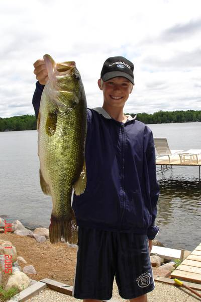 Largemouth bass for Lopez lake fishing