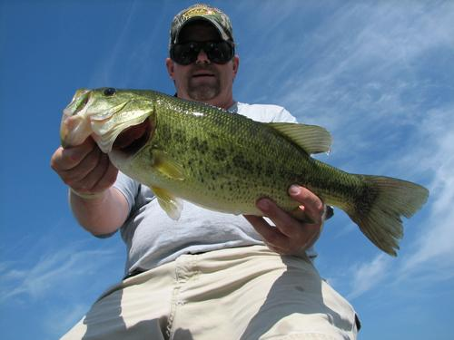 Lake and fishing information for lake zurich lake county for Fishing lakes in illinois