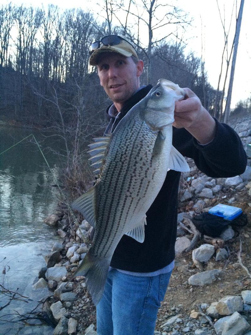 Lake link photo gallery for Heidecke lake fishing report