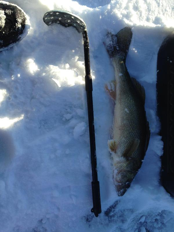 North golden lake photos steele county north dakota for Nd game and fish stocking report