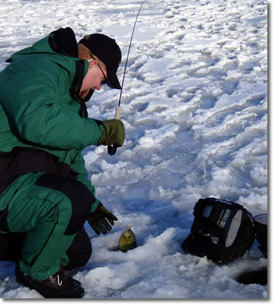 Camera or flasher for ice fishing for Ice fishing flasher