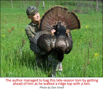 The author managed to bag this late-season tom by getting ahead of him as he walked a ridge top with a hen/