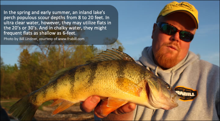 In the spring and early summer, an inland lake's perch populous scour depths from 8 to 20 feet. In ultra clear water, however, they may utilize flats in the 20's or 30's. And in chalky water, they might frequent flats as shallow as 6-feet.
