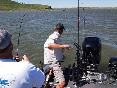 Good things are coming to lake oahe for Missouri river fishing report south dakota