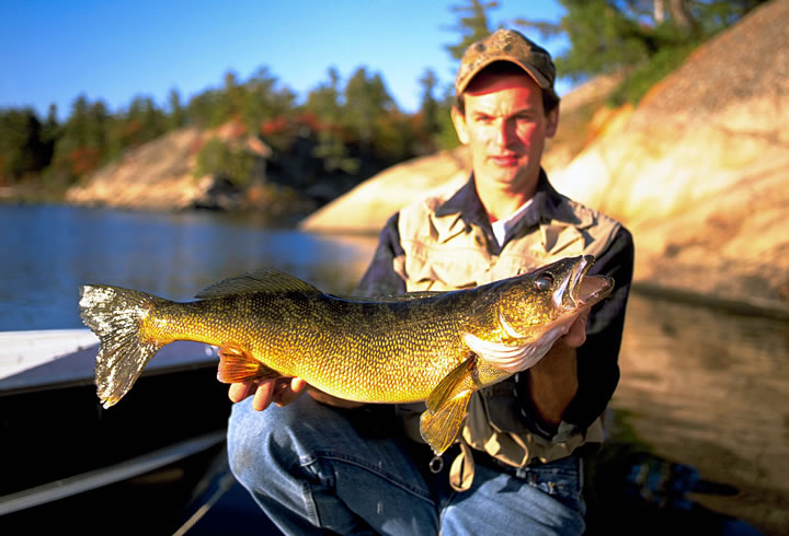 b96d0bb79e5 Catch Walleye During Summer Cold Fronts
