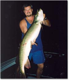 Big Night Time Muskie