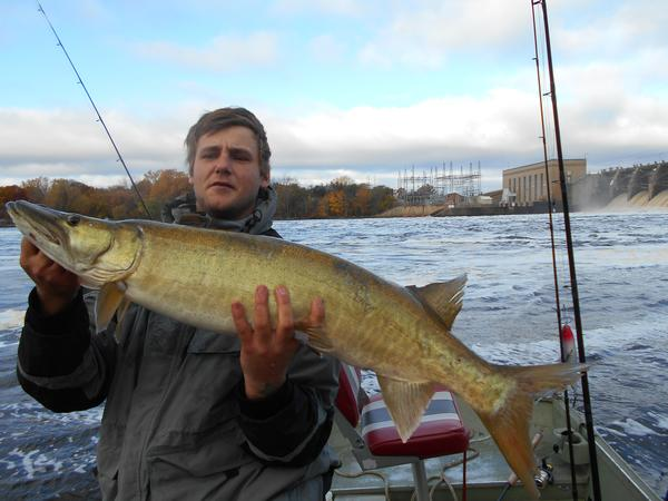 Saturday 15 mins out second cast with his new muskie mark for Finger lakes fishing report