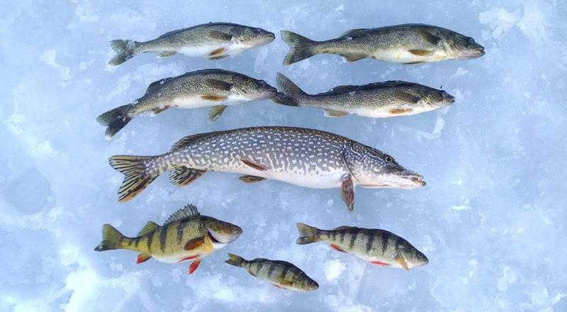 Lake gogebic gogebic county fishing reports and discussions for Lake gogebic ice fishing