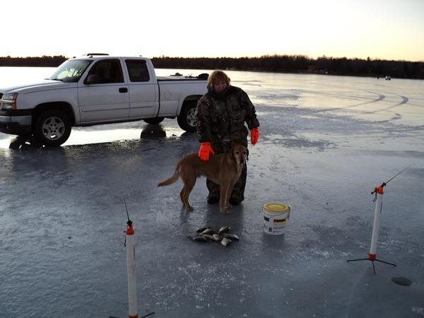 Fishing reports for lake arbutus jackson county wisconsin for Jackson lake fishing report