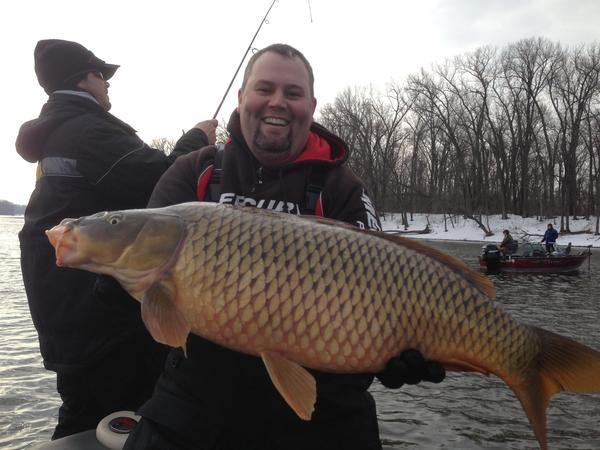 Fishing reports for mississippi river red wing minnesota for Ms fishing reports