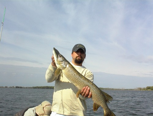 Roy lake marshall county fishing reports and discussions for South dakota fishing report