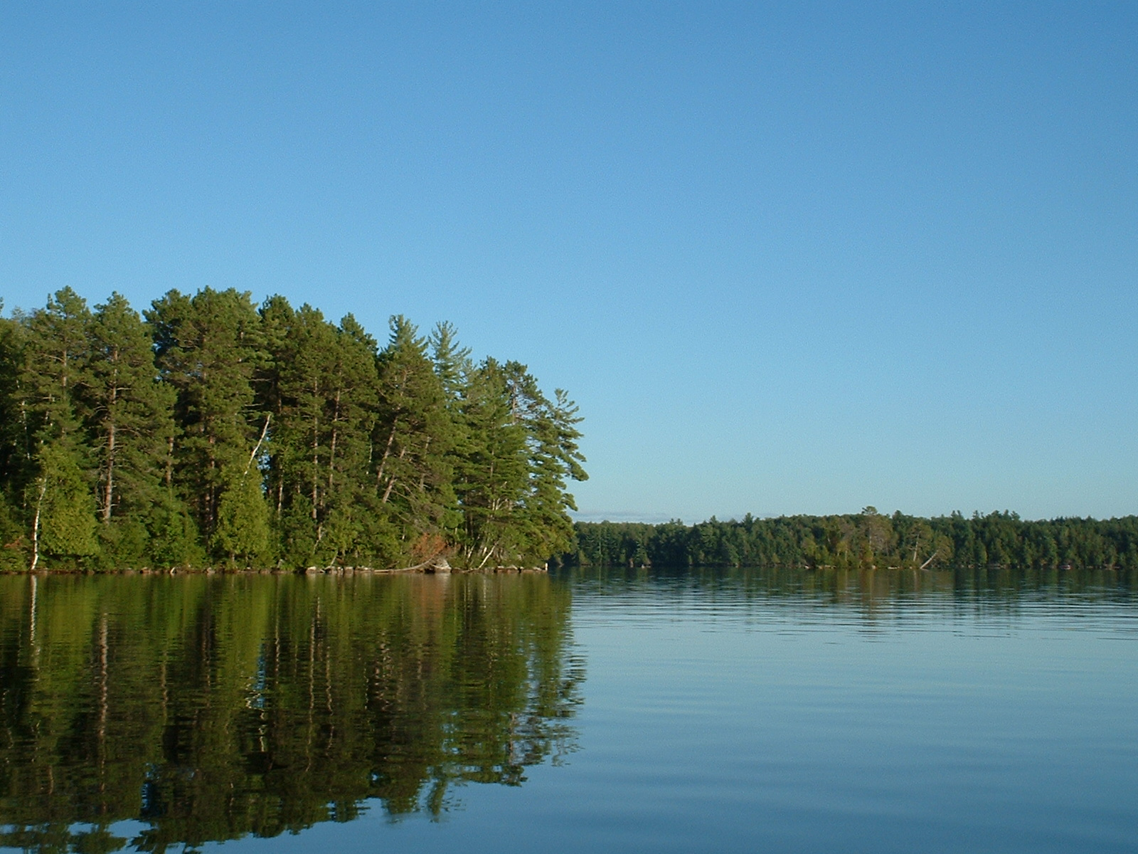 Star lake vilas county fishing reports and discussions for Lake wisconsin fishing