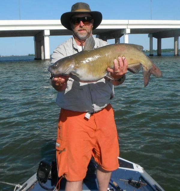 Lake erie west harbor sandusky bay fishing reports and for Lake erie fishing hotline