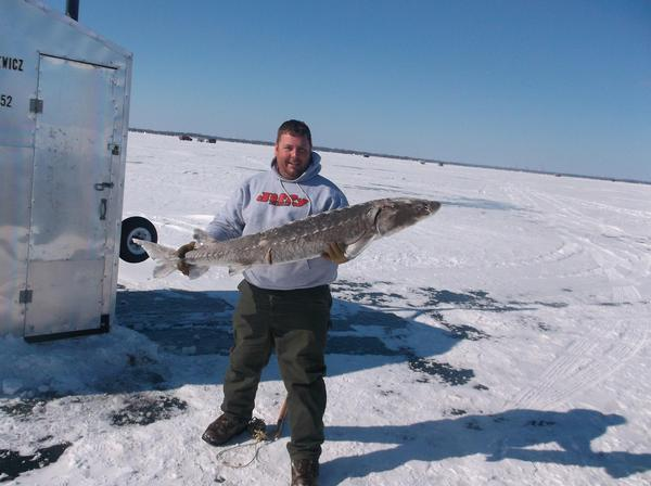 Fishing reports for sturgeon spearing winnebago county for Sturgeon fishing report