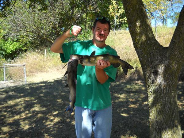 Hennepin canal fishing reports and discussions for Canal bait and tackle fishing report