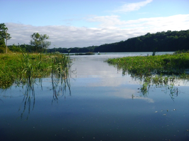 Rice lake dane county fishing reports and discussions for Silverwood lake fishing report