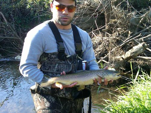 Trout streams in northern illinois for Fishing lakes in illinois