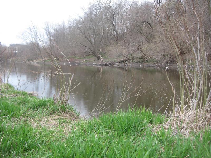 Milwaukee area fishing for Milwaukee river fishing report