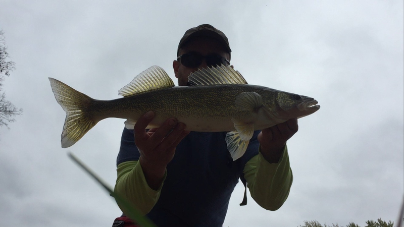 Rock river oregon il fishing reports and discussions for Illinois river fishing report