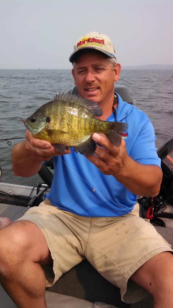 Miltona lake douglas county fishing reports and discussions for Douglas lake fishing
