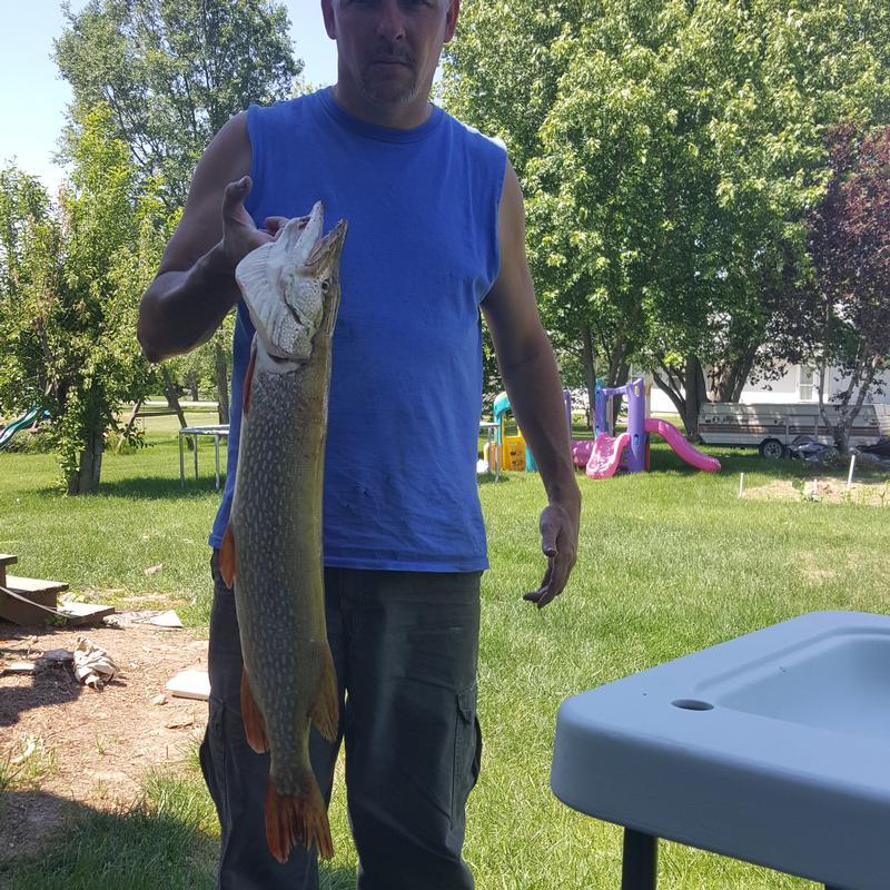 Northern Illinois Marine Dealer: Pecatonica River, Winnebago County Fishing Reports And