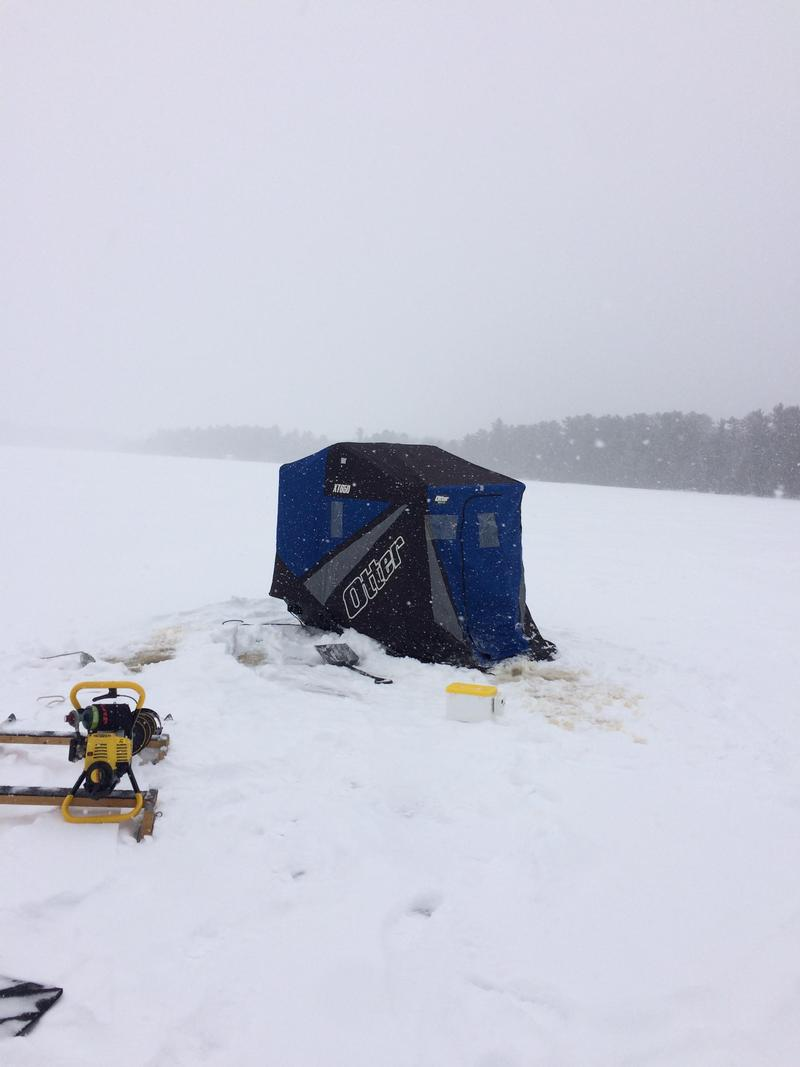 First ice 2016 fishing reports and discussions for Ice fishing report
