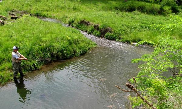 Guide for iowa or richland county trout for Iowa fishing lakes