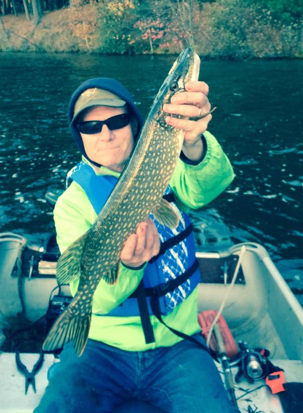 Minocqua Fishing Reports And Discussions