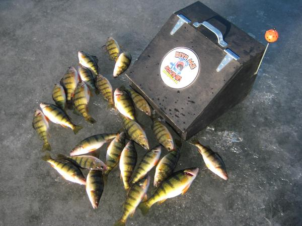 Heated box tip ups for Tip up fishing