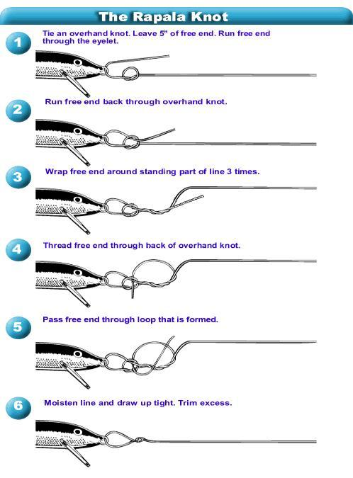 Do you use a swivel or directly tie your hook lure to your for How to tie a fishing lure
