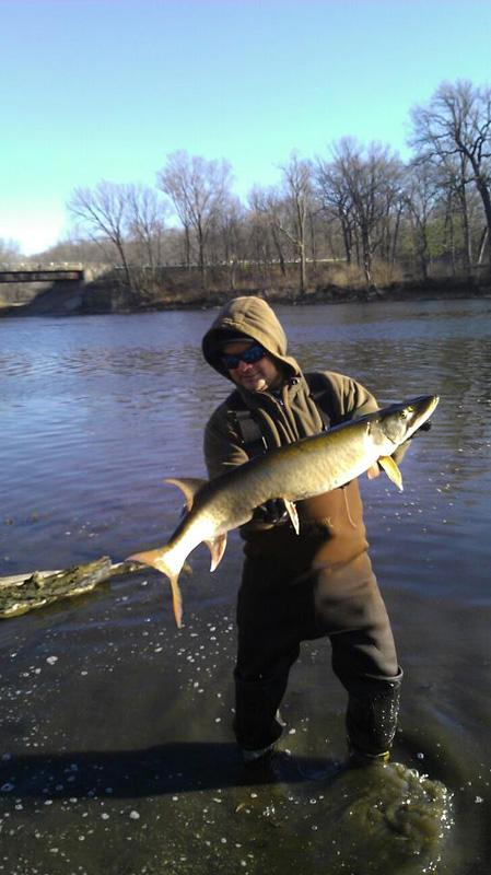 Fox river below yorkville dam fishing reports and discussions for Illinois river fishing