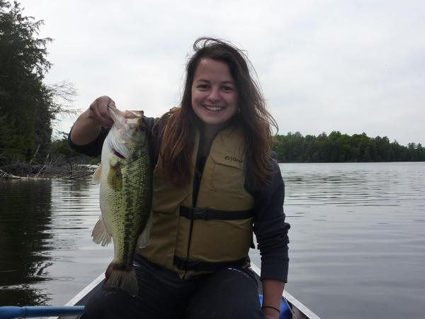 Fishing reports for sylvania wilderness area gogebic for Lake gogebic fishing report