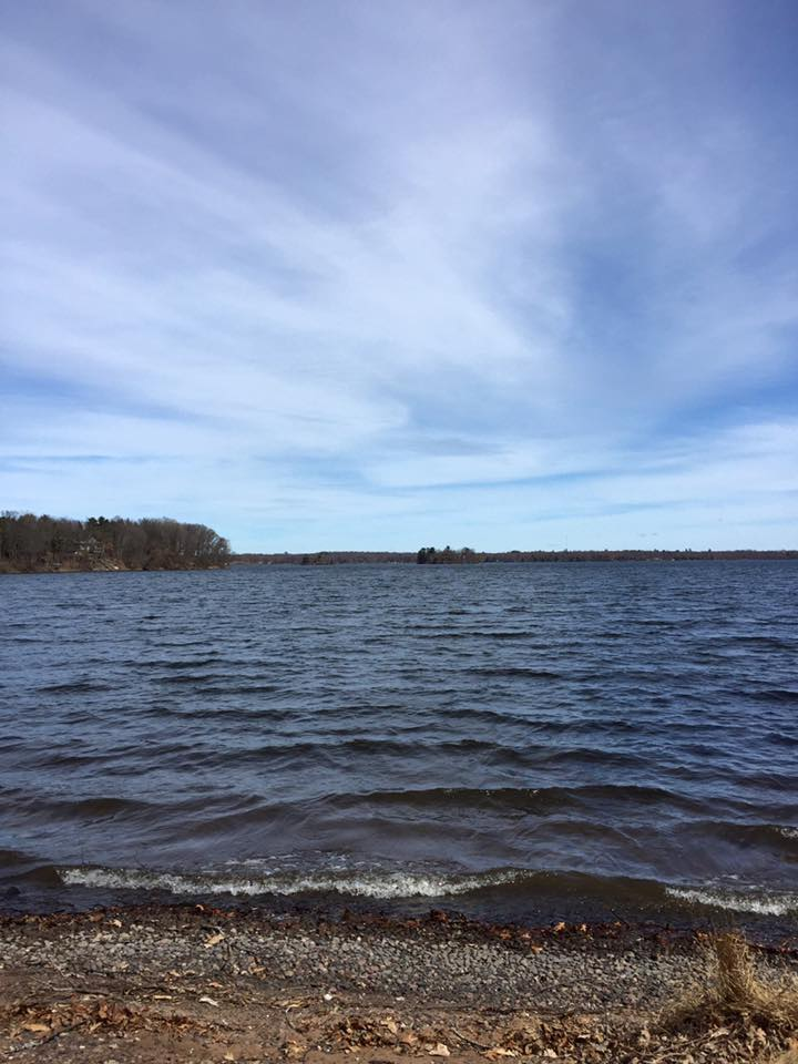Red cedar lake barron county fishing reports and discussions for Lake wisconsin fishing