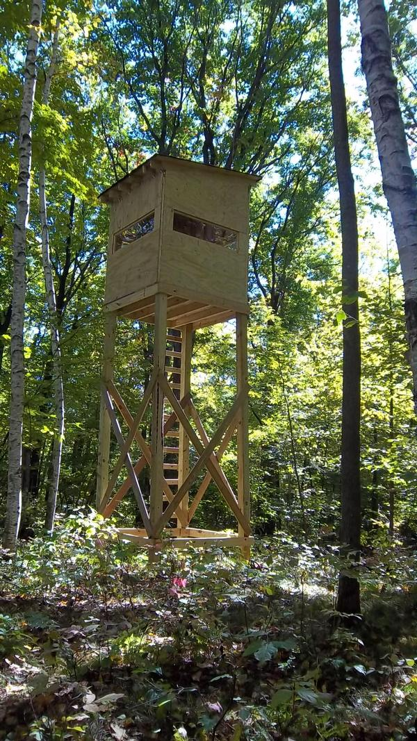 Elevated deer stand photo 39 s for Deer hunting platforms