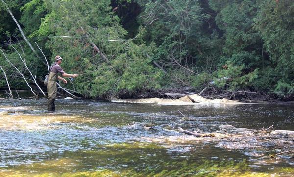 Milwaukee river ozaukee county fishing reports and for Milwaukee river fishing report
