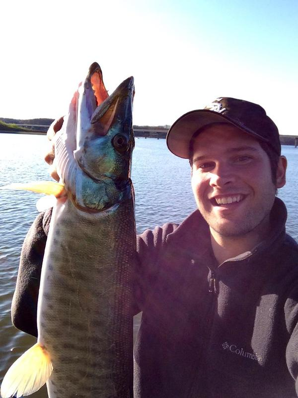 Lake shelbyville il fishing regulations for Illinois fishing regulations