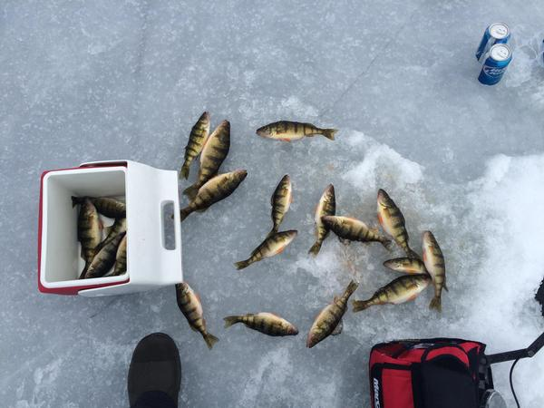 "shawano single guys ""we did a lot of things together as little guys,"" wolf said ""we would go out on to shawano lake when it would just freeze over and put up a sheet between two poles with our ice skates on and we would just zoom across the lake it was so much fun."