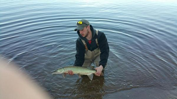 Fishing reports for wisconsin river prairie du sac wisconsin for Wisconsin river fishing report