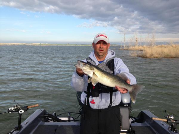 Lake Sakakawea, Mercer Country Reports and Discussions