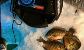 First Ice is Panfish Prime Time