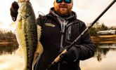Bass Fishing: Victory Revealed